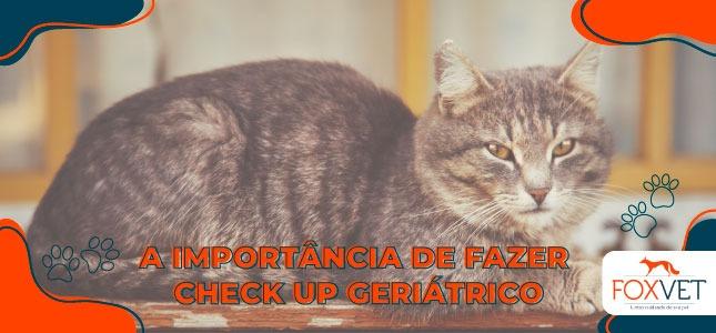 a importancia de uum check up geriatrico blog